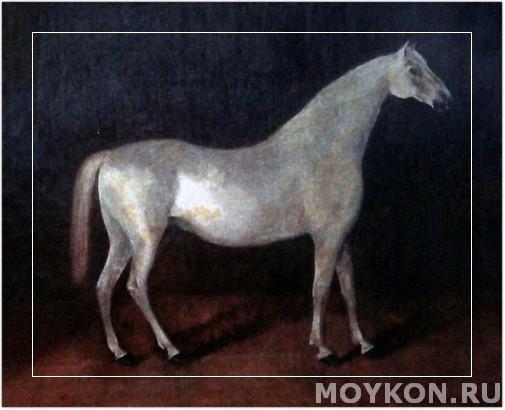 Знаменитый серый конь Сметанка