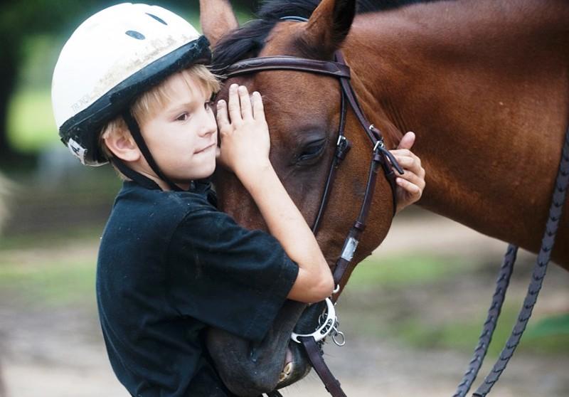 Как подружиться с лошадью