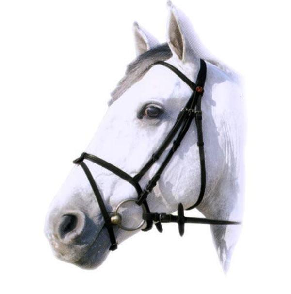 Уздечка для лошади снаряжение