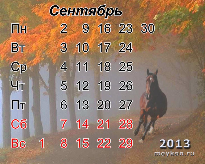календарь с лошадьми на 2013 сентябрь