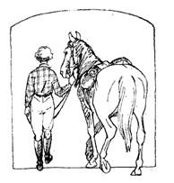Уздечка для лошадей