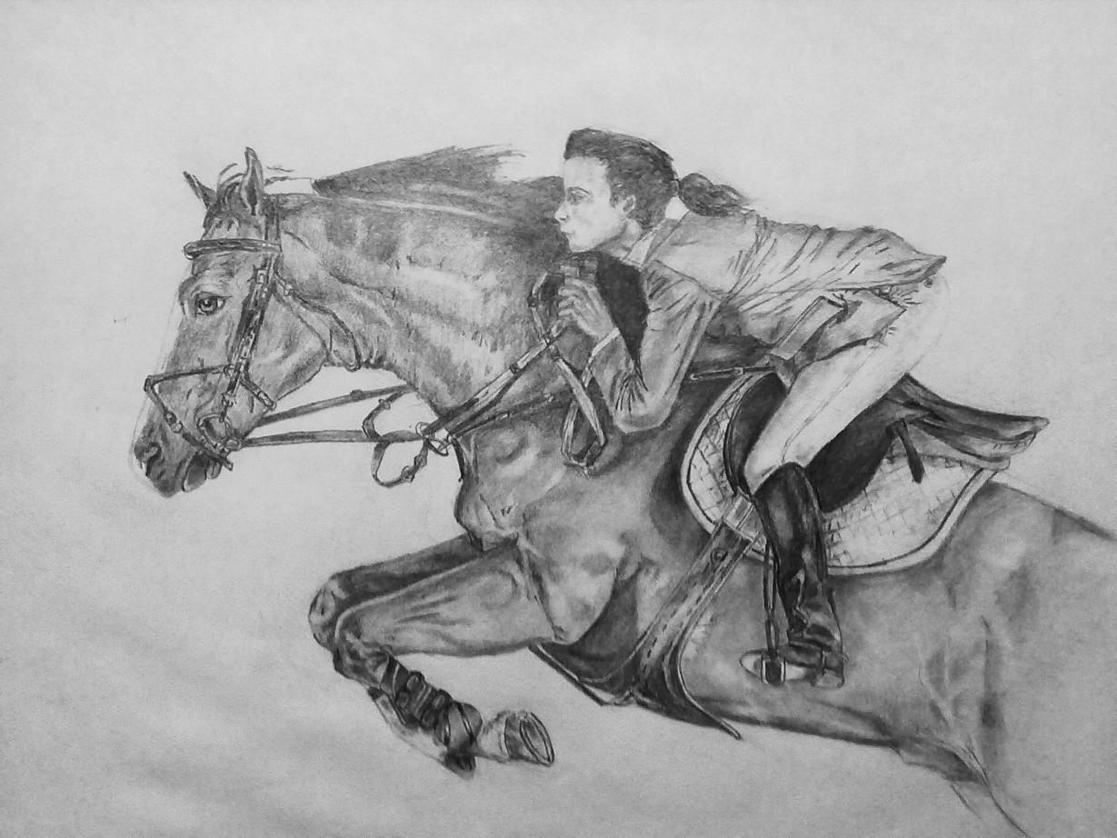 картинки лошадей рисунки лошадей