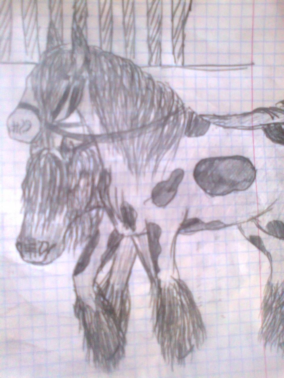 Любительские рисунки лошадей (3)
