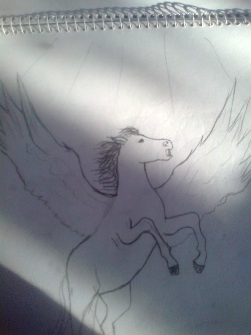 Любительские рисунки лошадей (5)