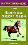 Навикулярный синдром лошади