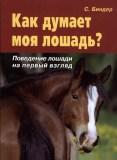 Как думает моя лошадь