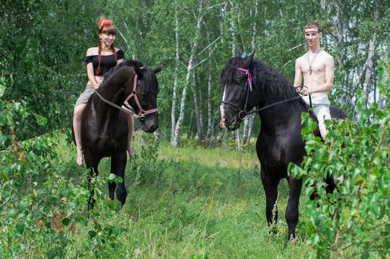 Лошади в клубе Анкор