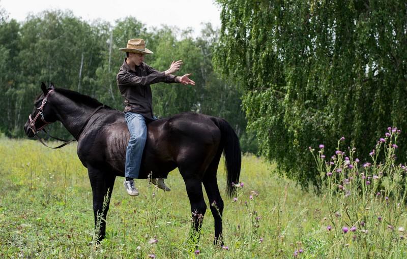Фотосессия с лошадьми в Омске
