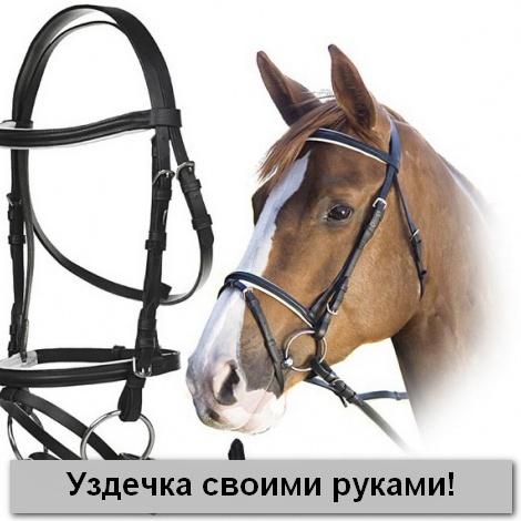 Как сделать уздечку для лошади своими руками