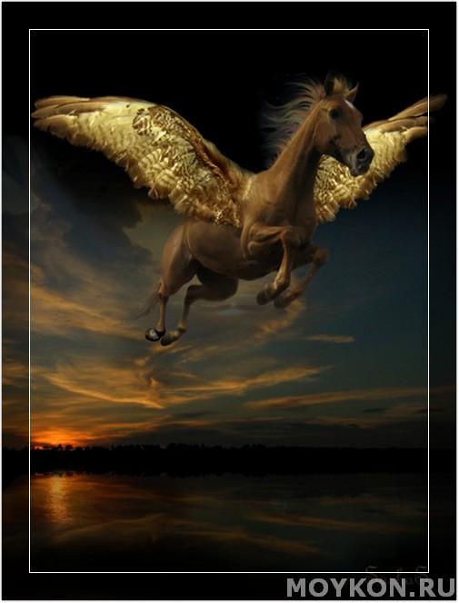 Золотой пегас в небе