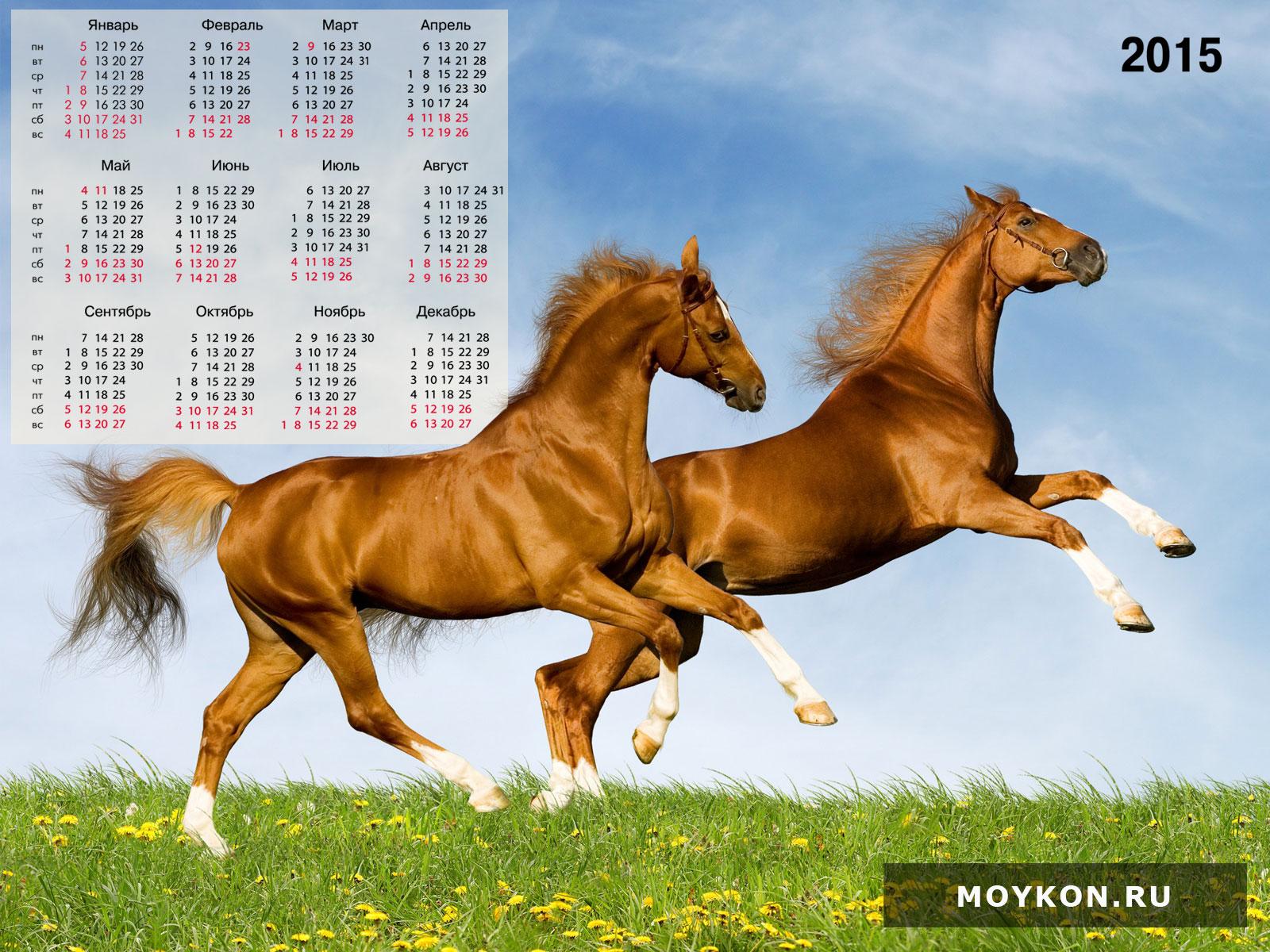 Календари с лошадьми на 2015 год