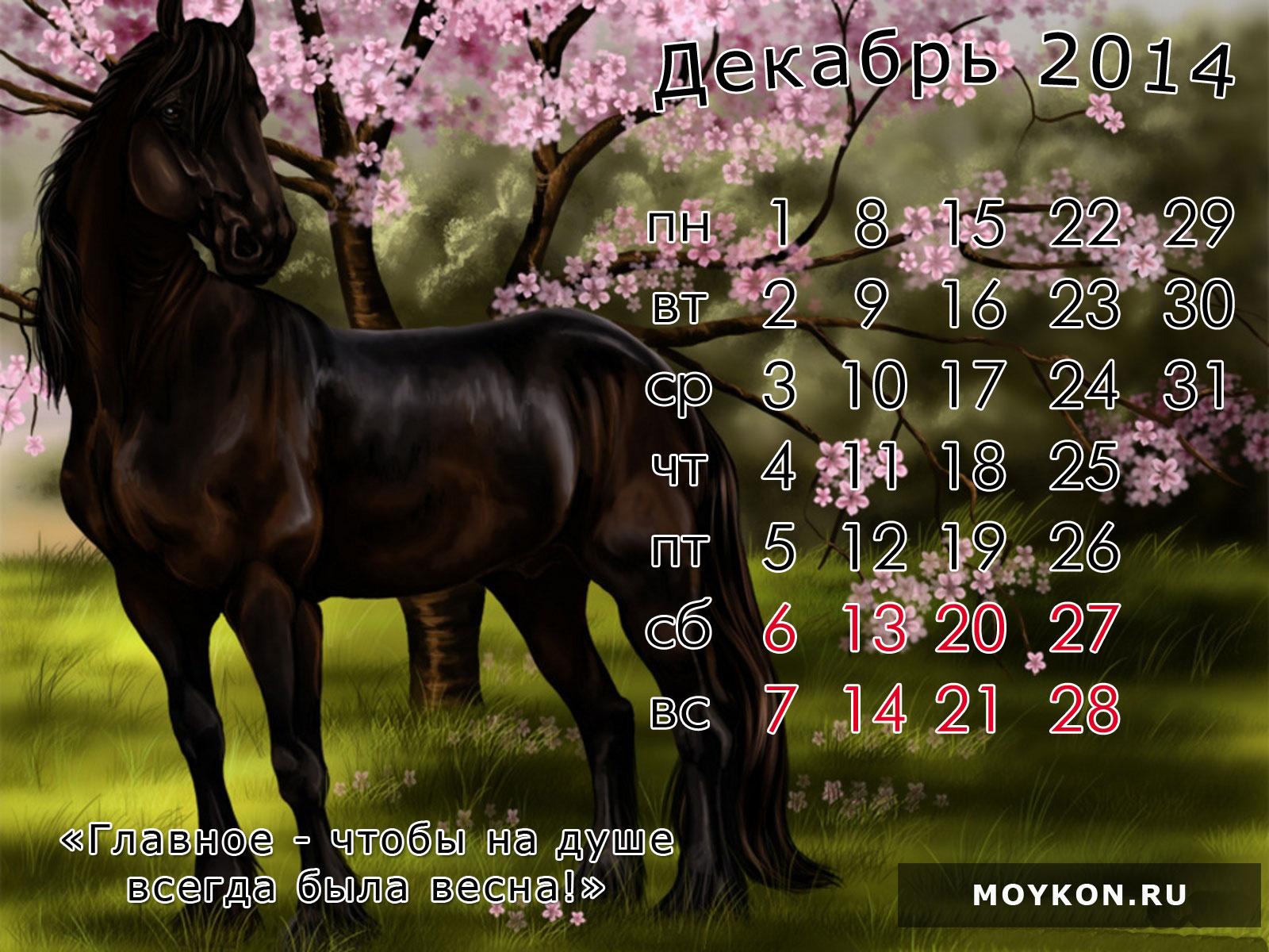 Календарь с лошадьми 2014