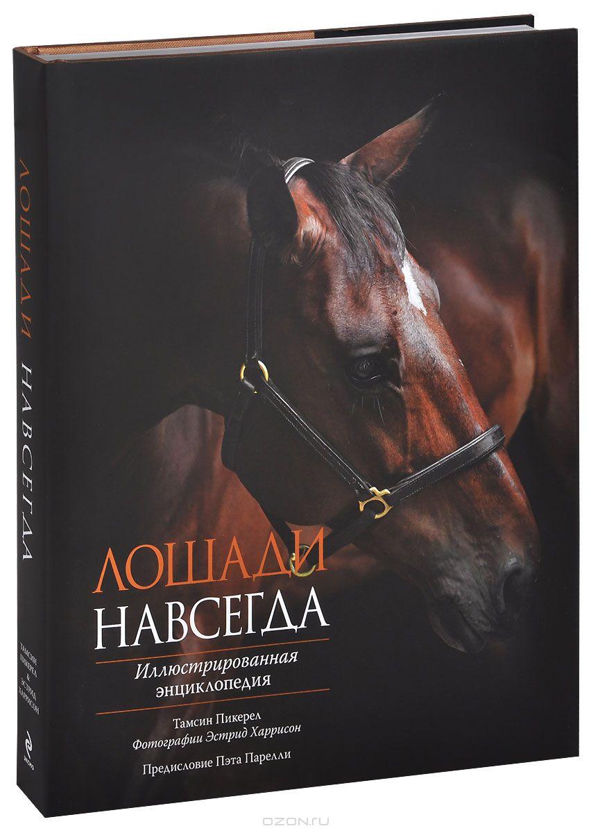 Книги про  лошадей на Новый Год
