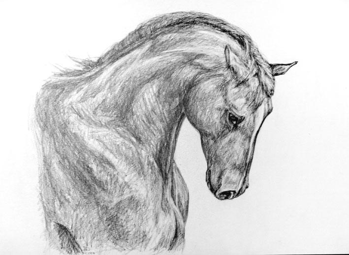 красивые рисунки картинки карандашом