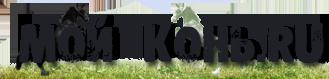 Сайт о лошадях - Мой Конь, лошади, все о лошадях, разные лошади.