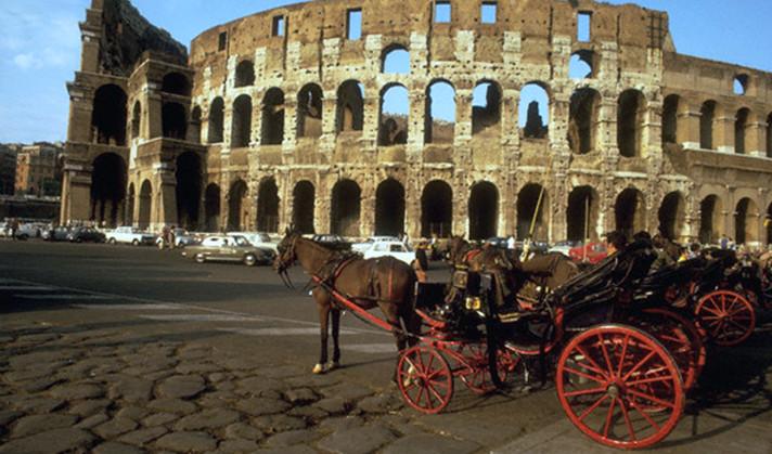 Лошади по-итальянски