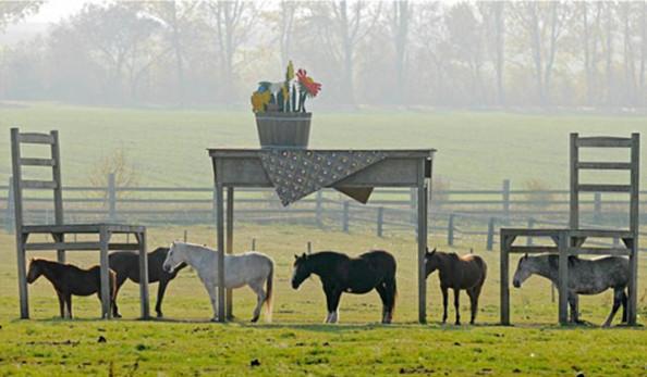 Лошади у немцев