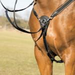 Мартингал для лошади