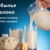 Лошадиное молоко. Полезные свойства, лечение.