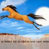 ТОП-10 мультиков про лошадей